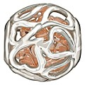 Chamilia Sterling Silver Captured Hearts Bead - Product number 1060589