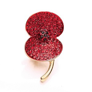 Buckley Stone Set Poppy Brooch - Product number 1492578