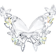 Swarovski Crystal Butterfly - Product number 1635964