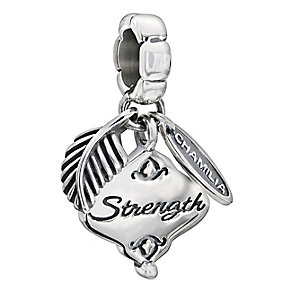 Chamilia Sterling Silver Her Gift Of Strength Bead - Product number 2178141