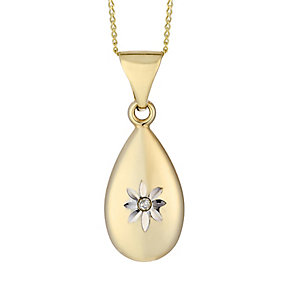 9ct Yellow Gold & Diamond Accent Flower Design Oval Pendant - Product number 2300982
