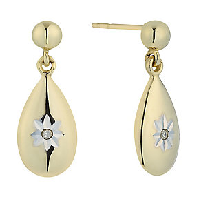 9ct Yellow Gold & Diamond Accent Oval Drop Earrings - Product number 2300990