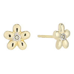 9ct Yellow Gold & Diamond Accent Flower Stud Earrings - Product number 2301091