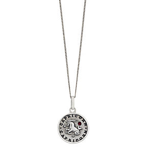 Silver & Swarovski Elements Zodiac Capricorn Pendant - Product number 2317400