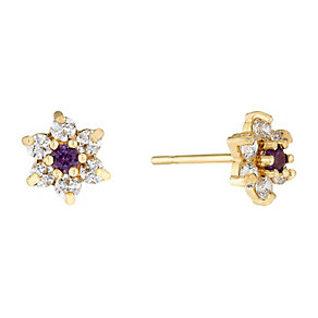9ct Yellow Gold Amethyst & Cubic Zirconia Stud Earrings - Product number 2646587