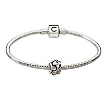 Chamilia silver bracelet and flower charm starter set - Product number 2962349