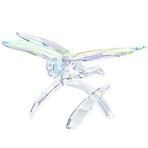 Swarovski Dragonfly Figurine - Product number 3558029