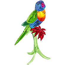 Swarovski Rainbow Lorikeet - Product number 4246594