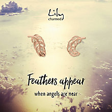 Lily Charmed Silver Rose Gold-Plated Feather Stud Earrings - Product number 6250955