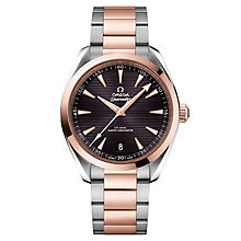 Omega Sea Master Aqua Terra Men's 41mm Two Colour Watch - Product number 6939988