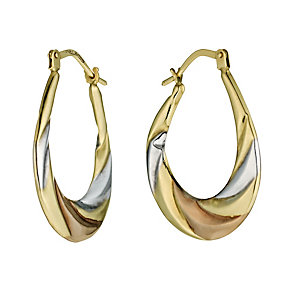 9ct Gold Creole Earrings - Product number 8127875