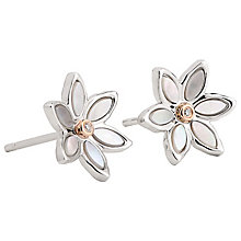 Clogau Lady Snowdon Diamond Earrings - Product number 8220743