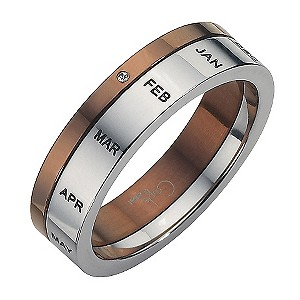 Stainless Steel Two Colour Diamond Set Month Ring Medium - U