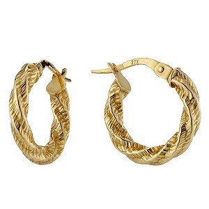 9ct Yellow Gold Twist Small Round Creole Earrings - Product number 8647380