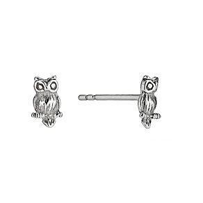 Silver Owl Stud Earrings - Product number 9592458