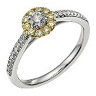 18 carat white gold & gold plated 1/2 carat halo solitaire - Product number 9717404
