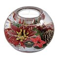 Special Memories Red Star Candle Holder - Product number 9787984