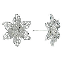 Petali Di Amore Sterling Silver Flower Stud Earrings - Product number 9948465