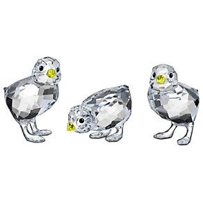 Swarovski Baby Chicks - Product number 9995196