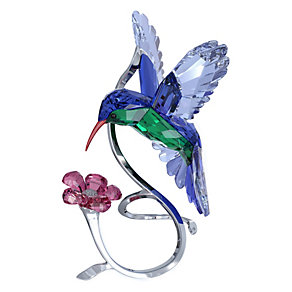 Swarovski Crystal Hummingbird - Product number 9995498